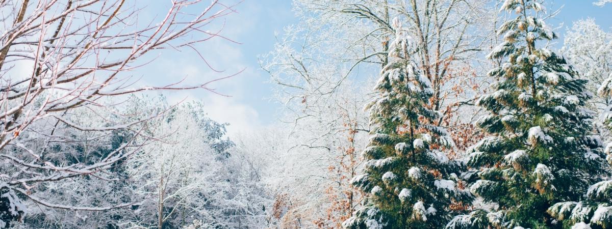 Loisirs en famille – Vacances d'hiver du 17 au 24 février 2021