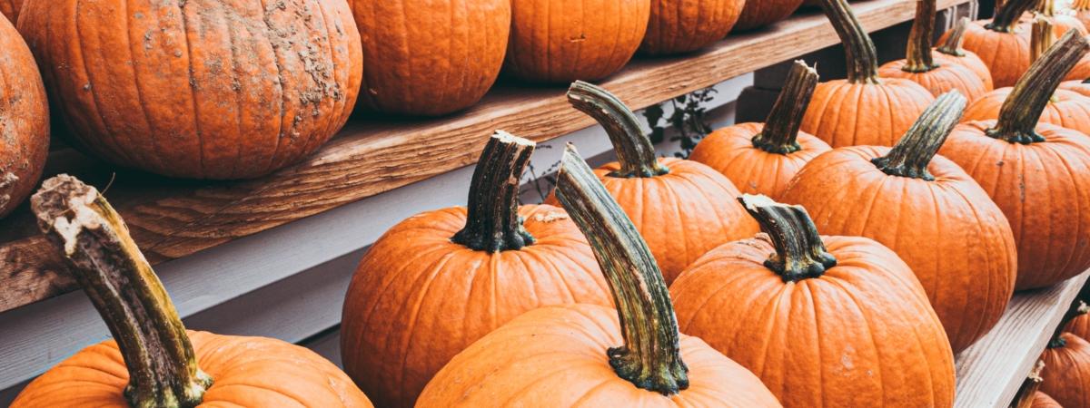 Loisirs en famille – Pause automnale du 19 au 23 octobre